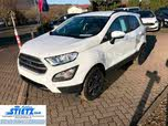 Ford EcoSport Business,Navi,Kamera,Winterpaket